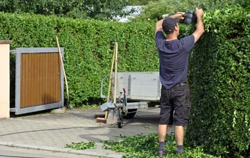 professional Staines Green hedge cutting services