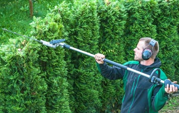 Staines Green hedge trimming costs