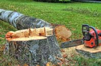 free Staines Green tree felling quotes