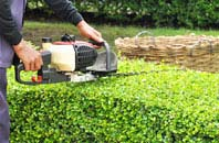 Staines Green hedge trimming services