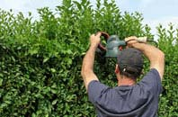 free Staines Green hedge trimming quotes